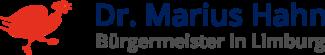 Bürgermeister in Limburg Dr. Marius Hahn
